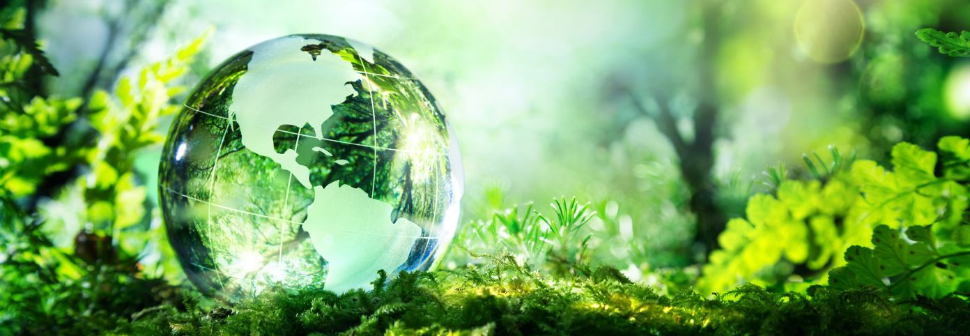 Internationally Safe Environmental Impact